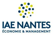 IAE Nantes, Économie et management